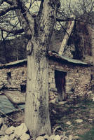 Haunted Fairytale by Vrohi