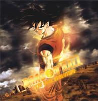 Dragon Ball - Real Evolution by brolyomega