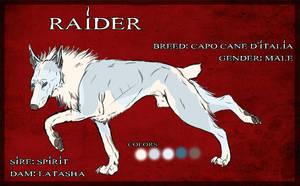 Raider - CCDI by Dalkur