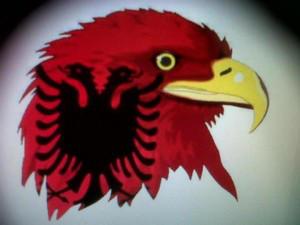 AlbanianKnight's Profile Picture