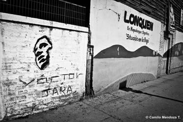 Anduve por Lonquen by Camilofotografo