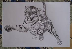 Tiger by WaveGlistening