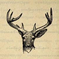 Antique Deer Digital Graphic No.444 by VintageRetroAntique
