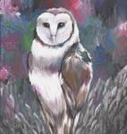 owl by nadjasimon