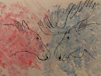 Moose Love by thetelltaleheart