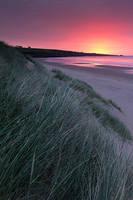 Sunrise, Lunan Bay by Greg-McKinnon