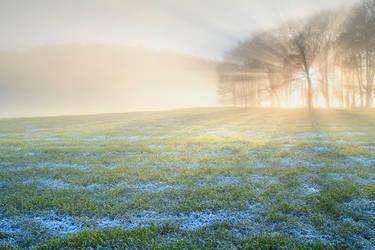 Kincaldrum Frost by Greg-McKinnon