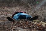 Dead Body by TwilitesMuse
