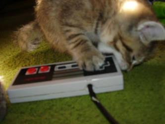 Yummy Nintendo by Becky-kins
