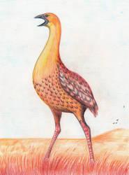 Ostrich rail by Amplion