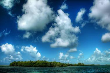 Isle of Trees by shuttermonkey