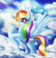 Rainbow Dash II by macalaniaa
