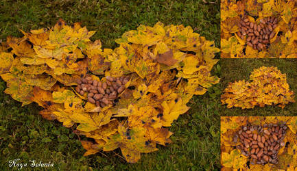 Autumn Heart by NayaSelenia