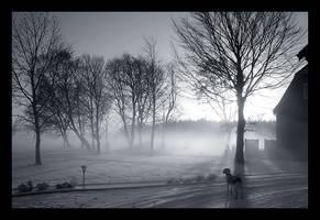 Winter Watch by cptkangaroo