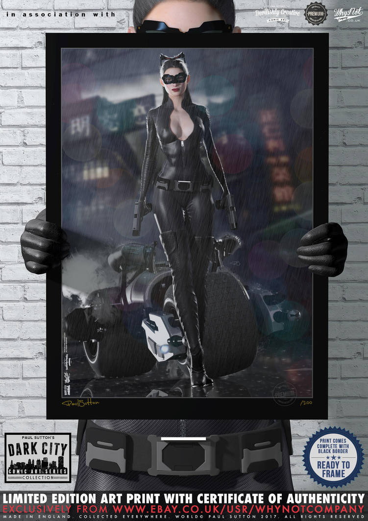 The Cat (TDKR) Dark City Series (Cosplay) No.11 by PaulSuttonArt