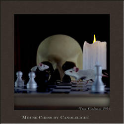 Mouse Chess by Candle Light by Shango-ThunderStones