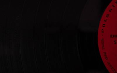 Vinyl by Mayones