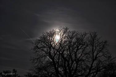 Moonlight shadow by King1976Bob