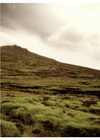 Bog of Donard by younghappy