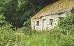 Irish Cottage UPDATED by younghappy