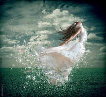 Dandelion Dreams by pareeerica