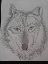 Floating Wolf? by Azynn