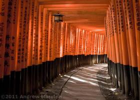 Kyoto Fushimi Inari Red Gates by AndrewMarston