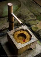 Zen Garden Stone Basin by AndrewMarston