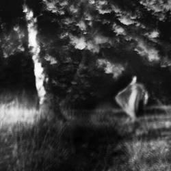 Night Dance by tuminka