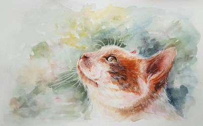 Pretty Kitty by Jickleberry