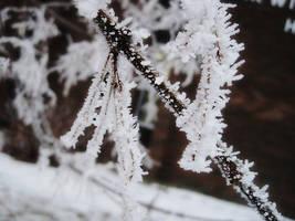 Frosty by Bonniiieeeee