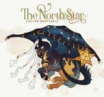 DEC 10 | The North Star by franknsteins