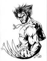 Wolverine Inks by CdubbArt