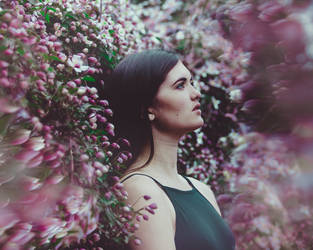 Flower Daze by Kerry-jayne