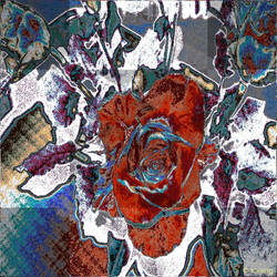 Apo_Rose by Lupsiberg