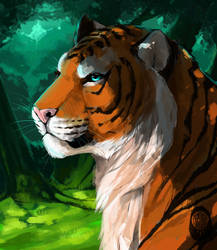 Tiger  by miracoll