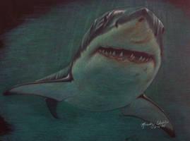 Great White Shark by Raksha-the-Demon