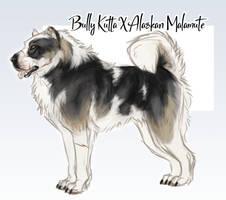 Dog-A-Day Adopt 2: Bully Kutta X Malamute by JatoWhitz