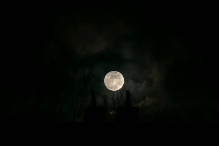 Moonlight shadow by DannyRoozen