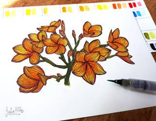 [Watercolor flowers] Plumeria by Julie7770