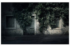 solitude by irremedios