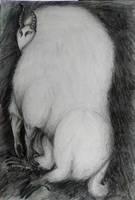 Fluffy creature by IrinaAsphodel
