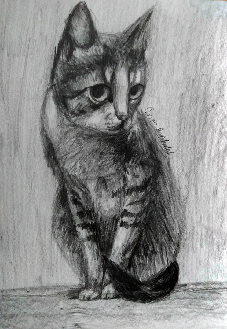My cat by IrinaAsphodel