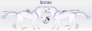 Quynan Reference by AntiDarkHeart