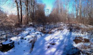 Guerilla garden under powerlines in the winter by caspercrafts