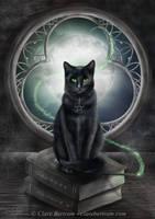 A Familiar Cat by CLB-Raveneye
