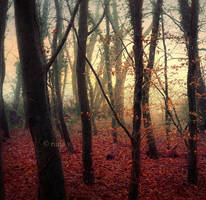 Fairytale by nina-Y