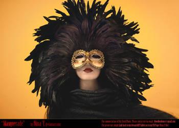 Masquerade Stock by nina-Y
