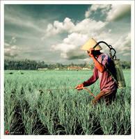 basmiHAMA _pesticider by justJAZZ