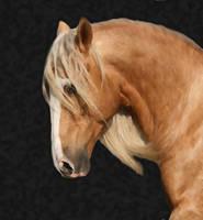Horse Manip by M3iik